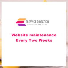 Website maintenance - Every Two Weeks