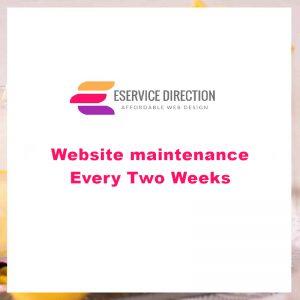 Website maintenance - Every Two Weeks